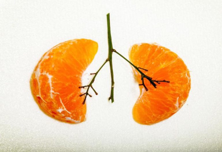 https://tved-prod.adobecqms.net/http://i.muyinteresante.com.mx/dam/curiosidades/top/17/04/25/lungs-as-oranges.jpg.imgo.jpg