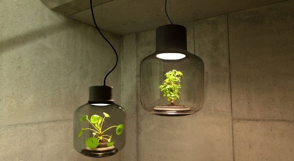 https://dam.tbg.com.mx/http://i.muyinteresante.com.mx/dam/tecnologia/16/03/16/we-designed-these-lamps-to-grow-plants-in-windowless-spaces-5__880_(600x400).jpg.imgo.jpg
