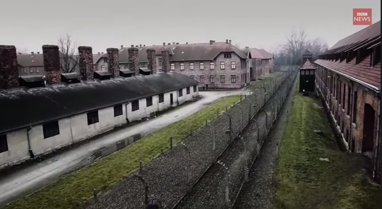 https://tved-prod.adobecqms.net/http://i.muyinteresante.com.mx/dam/video/15/01/Auschwitz1_1024.png/jcr:content/renditions/original